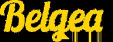 Belgea Inmobiliaria Murcia > Compra, vende, alquila